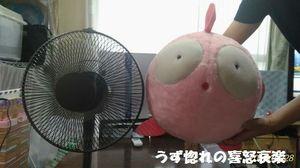 3 2018_08_28 17時15分26 特大ぎょぴちゃんぬいぐるみサイズ比較.jpg
