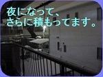 IMG_2254_R_thumb.jpg