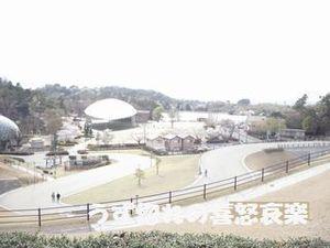 15 鞍ヶ池写真.JPG