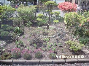 1 庭の写真.JPG