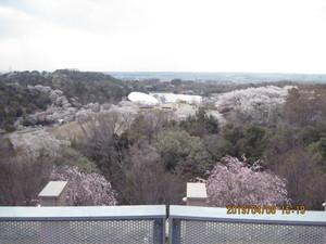 23 展望台からの眺め.JPG