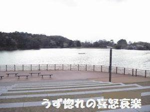 29 帰宅前の池の写真.JPG