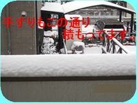 IMG_2264_R.jpg