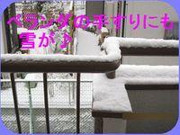 IMG_2268_R.jpg